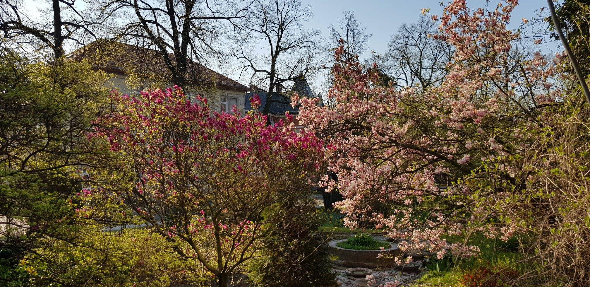 Kolory Wiosny