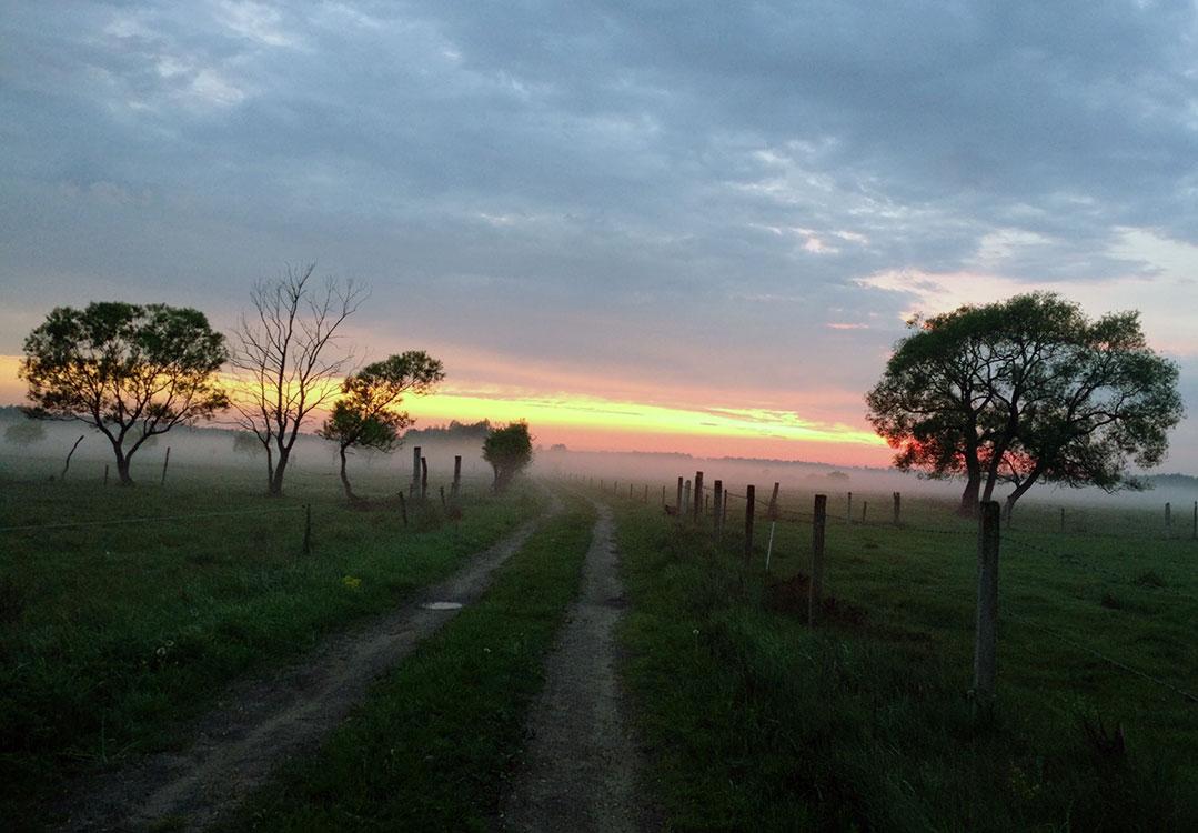 Agroturystyka i… etyka